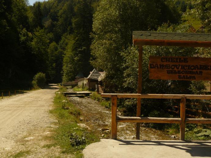 Dolina Dambovicioary