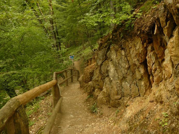 Dolina Szalayki