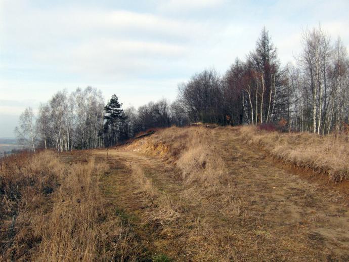 Góra Świński Ryj w Świętokrzyskiem