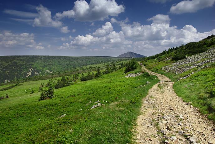 Ścieżka z Krakonoša do Luční boudy