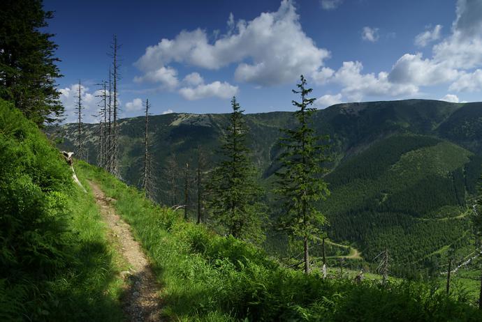 Po wyjściu z lasu oczom ukazuje się ten widok.