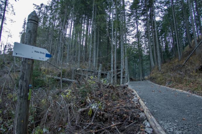Początek szlaku na Halę Stoły