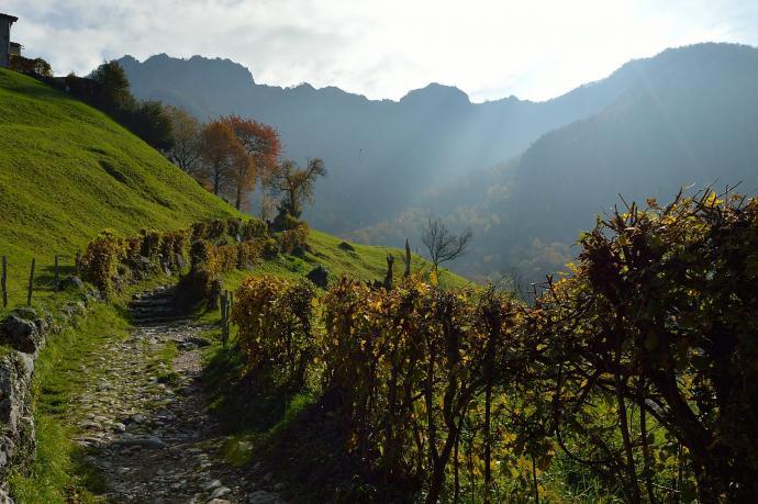 Trasa na Monte Resegone1