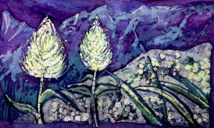 Dwa kwiaty nocą ( Tatry słowackie) 85 x 140 cm