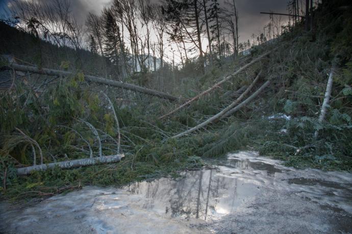 Zniszczenia po wietrze halnym z 25.12.2013 r.