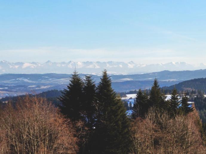Beskid Średni, widok z Koskowej Góry