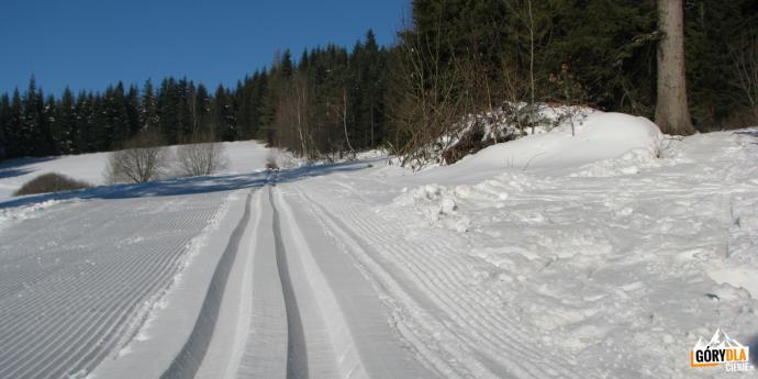 Trasa narciarstwa biegowego na Mogielicy