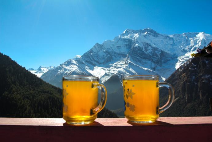 Herbata z cytryną, imbirem i miodem.