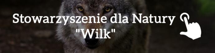 """Stowarzyszenie dla Natury """"Wilk"""""""