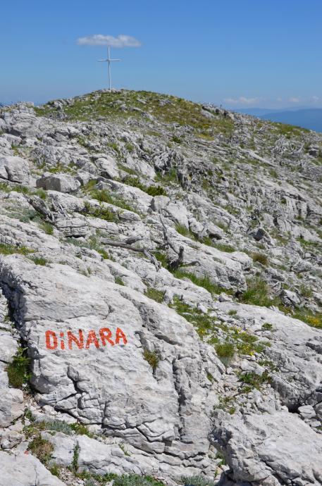 Dinara!