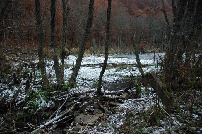 Pierwszy śnieg w październiku