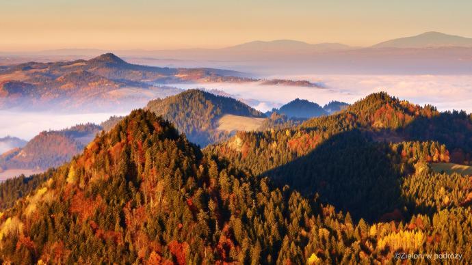 Pieniny w pigułce – strzeliste wzniesienia i mgły zalegające w dolinach.