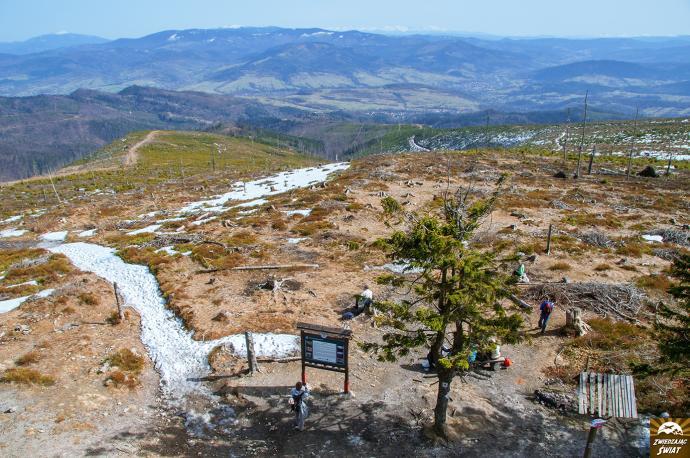 Widok z Baraniej Góry