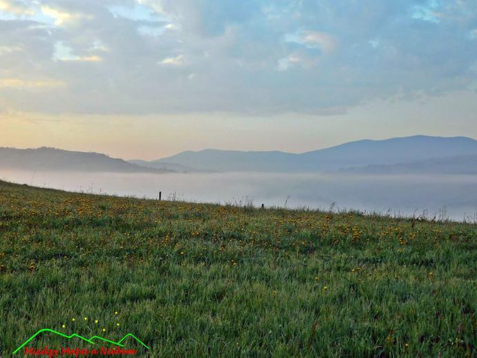 Mgły nad Mszaną