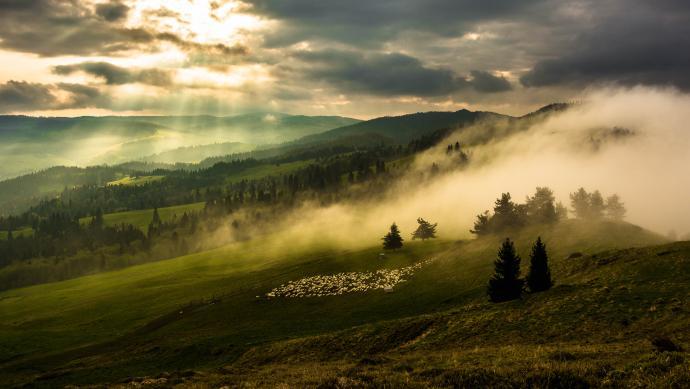 Świat we mgle