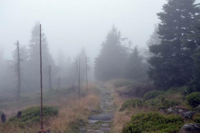 Szlak zielony po czeskiej stronie Karkonoszy