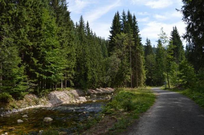 Dolina Łaby (Harrachova cesta)