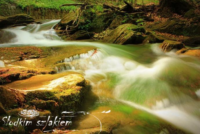 Potok Wielka Roztoka
