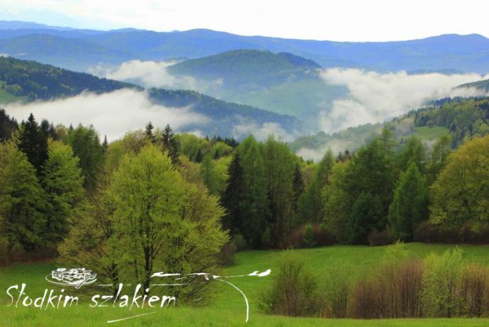 Pasmo Jaworzyny spowite mgłą