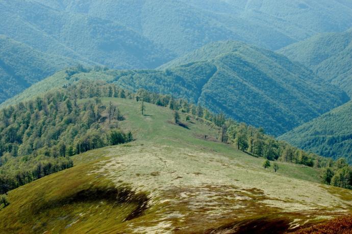 Krajobraz Borżawy