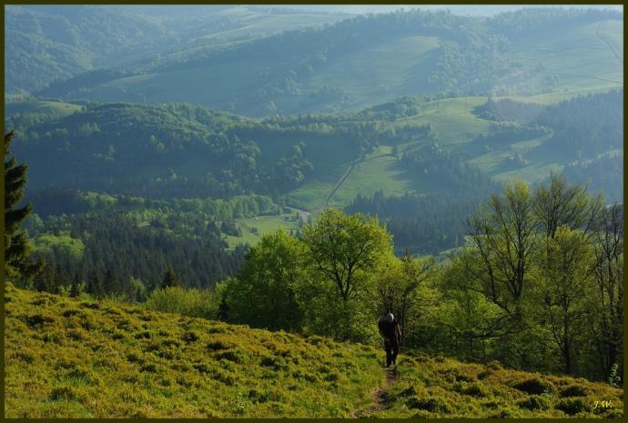 Podejście na Riapetską z Przełęczy Wołowieckiej