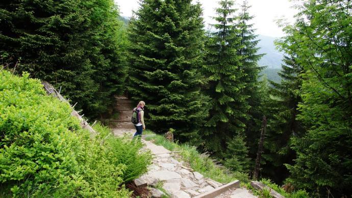 Przełęcz Sowia