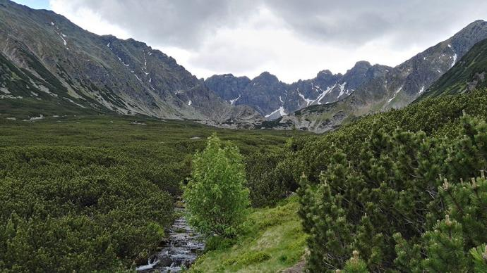 Dolina Pańszczycy