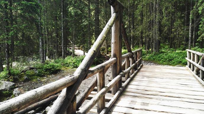 Droga do Doliny Pięciu Stawów