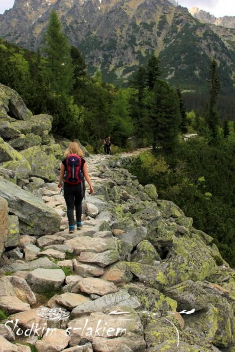 Czerwony szlak nad Popradzki Staw
