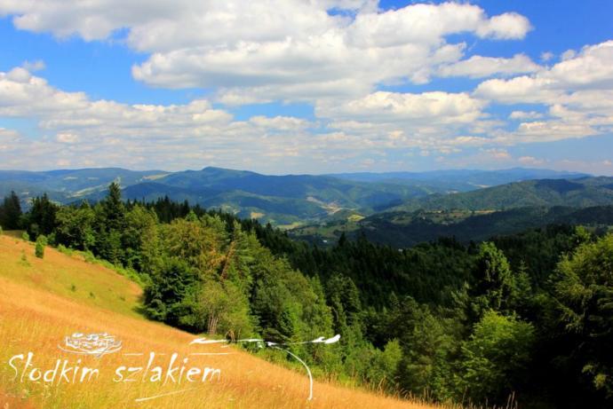 Rozległe widoki na dolinę Popradu, pasmo Jaworzyny oraz Ľubovnianską Vrchovinę