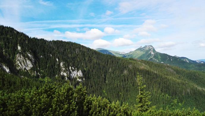 Widok ze szlaku przez Jaworzynkę