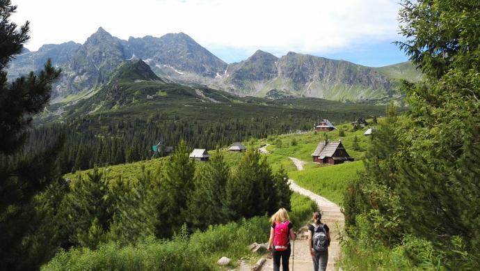 W stronę Murowańca