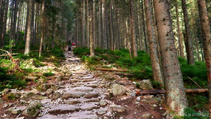 Odbijamy na szlak prowadzący do Doliny Pięciu Stawów