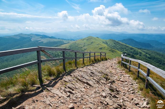 Wejście na szczyt Halicza