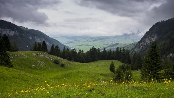 Widok na dolinę Appenzell ze szlaku