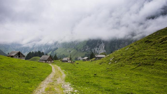 Pastwiska i zagrody