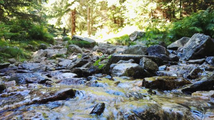 Szlak przechodzi na drugą stronę potoku