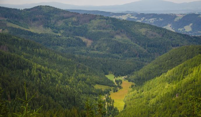 Dolina Jaworzynki