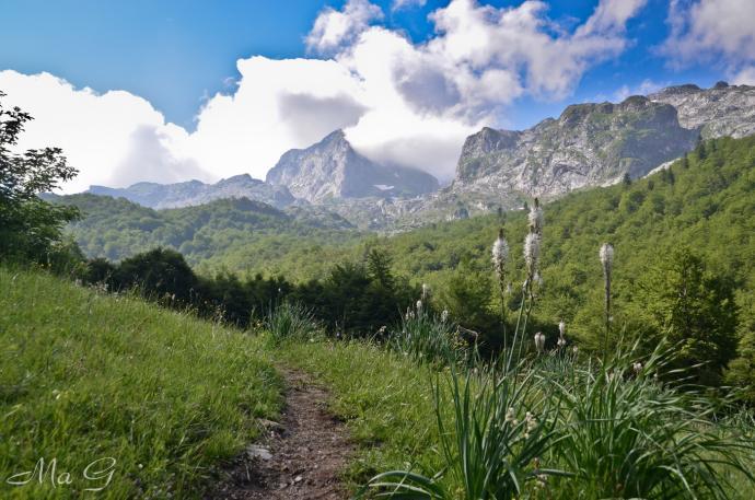 Prokletije - Przeklęte góry Albanii