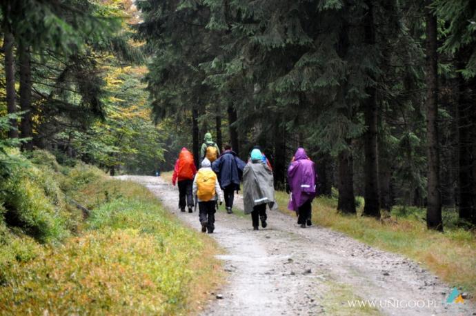 W drodze do Stacji Turystycznej Orle - stara droga celna