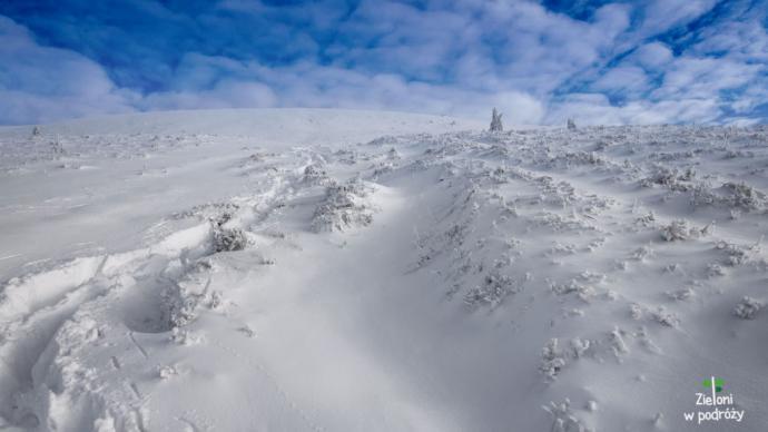 Zima w Bieszczadach, a wokół biało