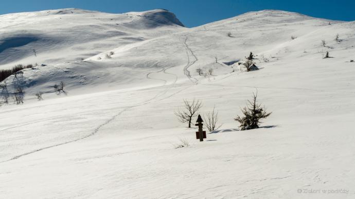 Widok na Tarnicę z Przełęczy Goprowskiej
