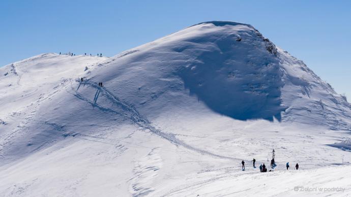 Przełęcz i widoczna ścieżka prowadząca na szczyt Tarnicy (na dalszym planie).