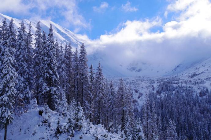 Góry zimą są przepiękne. Prawda?