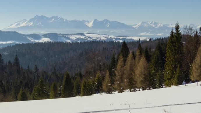 Pierwsze spotkanie z Tatrami