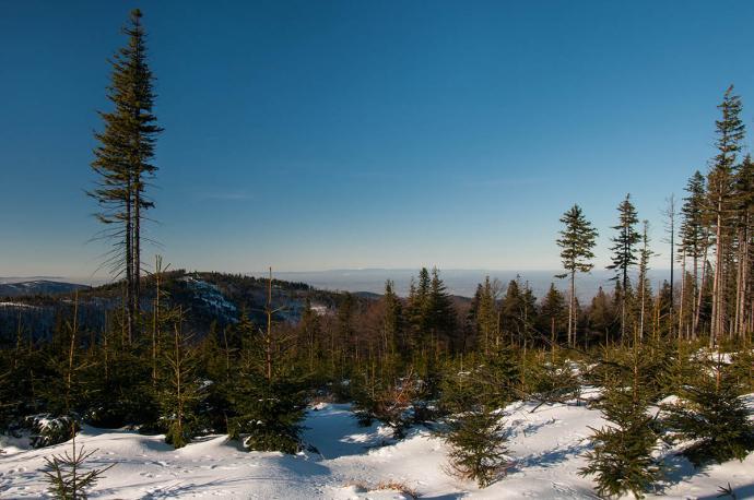 Widok ze szlaku Szyndzielnia-Klimczok na zachód z oddalonymi Sudetami