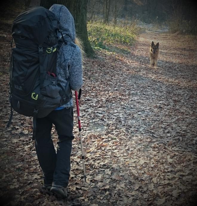 Plecak Jack Wolfskin Highland Trail XT 45 Women