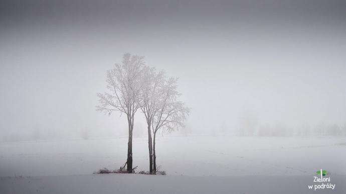 Żegnam Góry Świętokrzyskie takim ciekawym pejzażem