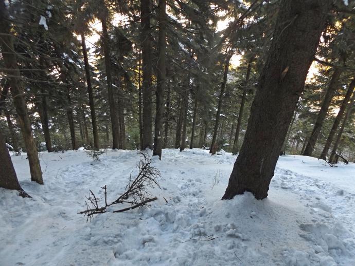 Jeśli nie widać to potwierdzam: było stromo!