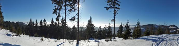 W drodze na Przełęcz pod Waligórą